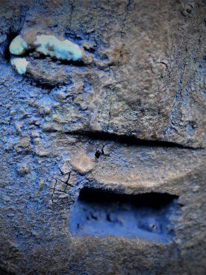 Fon fétiche janus détail yeux visage 1
