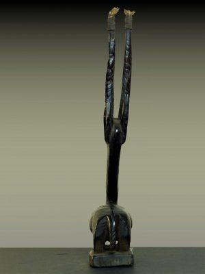tiwara en pied dos