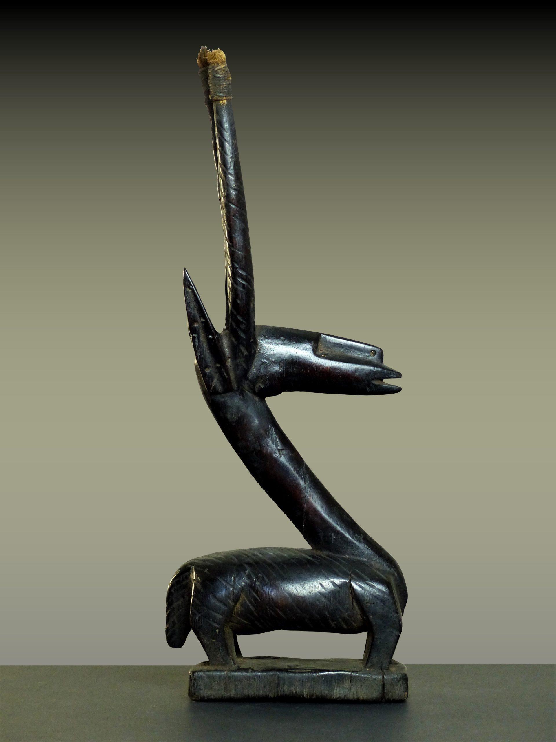 tiwara en pied profil droit