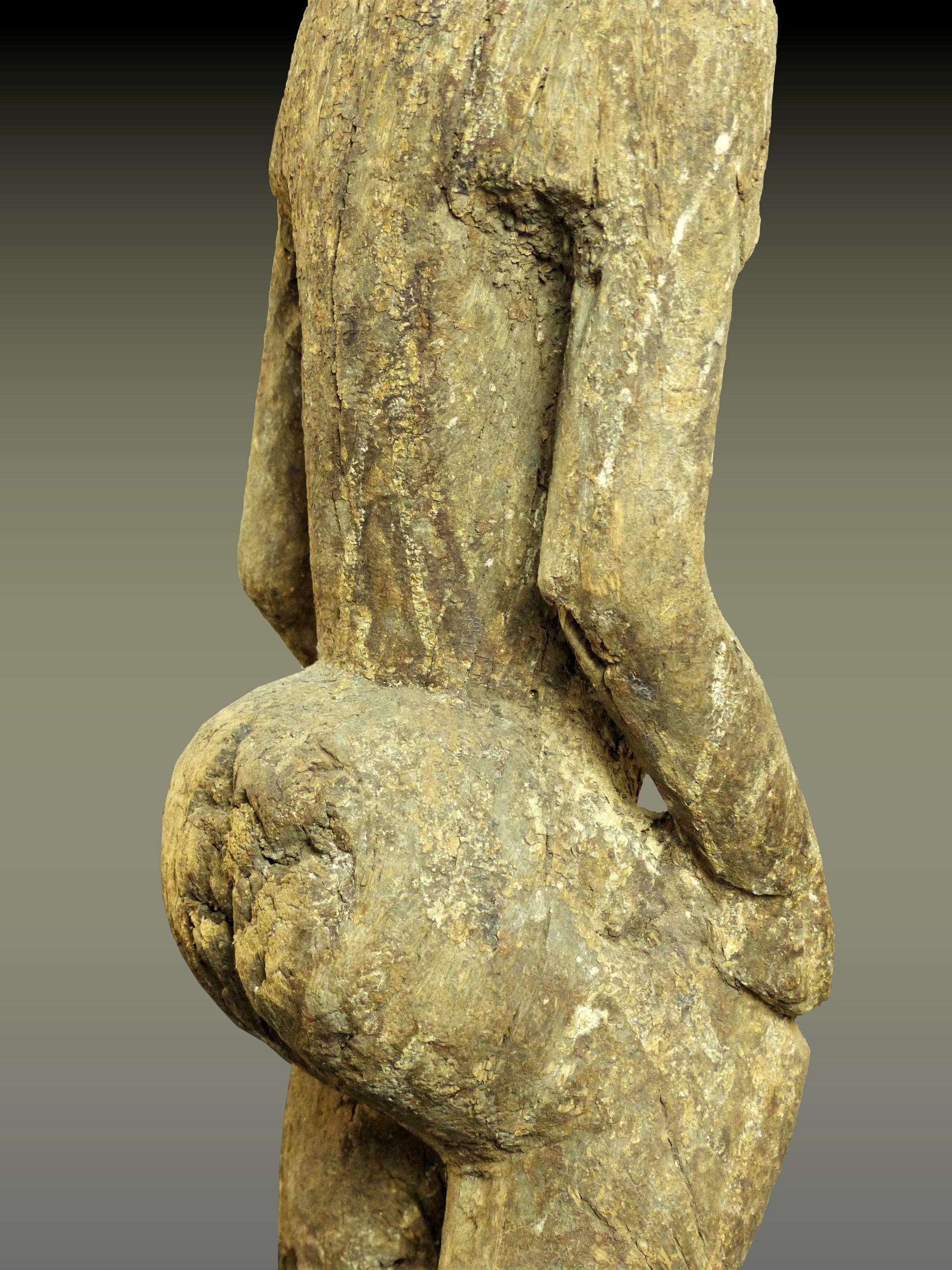 hogon corps trois quart droit dos
